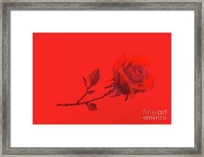 Framed Print featuring the photograph Designer Red Rose by Linda Phelps