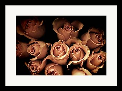 Bouquet Of Roses Framed Prints