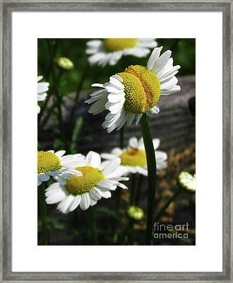 Desiring Autonomy Framed Print by Deborah Johnson