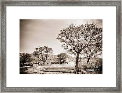 Desolate Framed Print by Gabriela Insuratelu