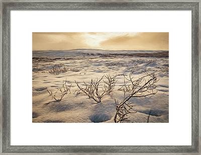 Desolate Landscape Framed Print by Maria Coulson