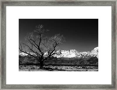 Desolation Framed Print by Jessica Roth