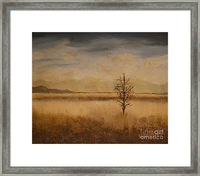 Desolation Framed Print by Lori Jacobus-Crawford