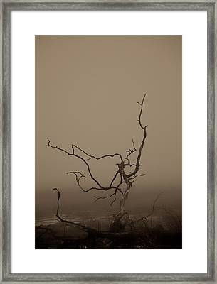Desolation Framed Print by Odd Jeppesen