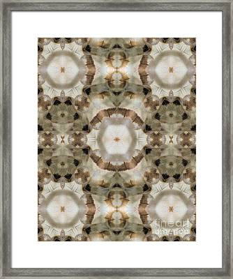 Despierto Framed Print by Patricia Griffin