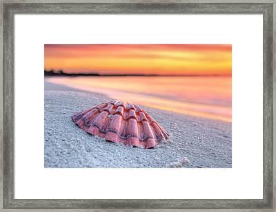 Destin Mornings Framed Print by JC Findley