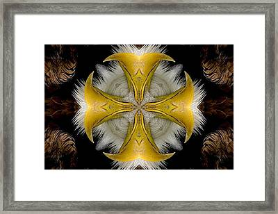Destined Framed Print