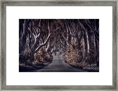 Destined To Wander Framed Print