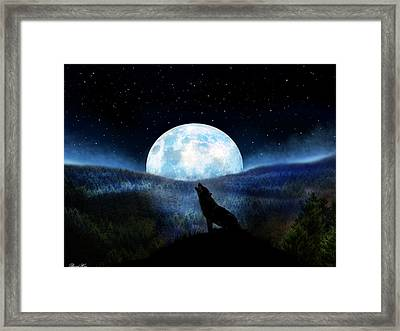 Path Of Destiny Framed Print