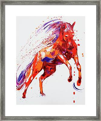 Destiny Framed Print by Penny Warden
