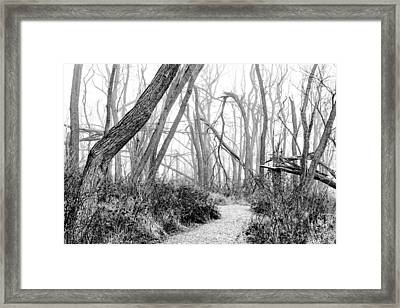 Destruction In Black And White Framed Print