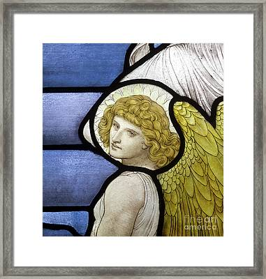 Detail Of An Angel Framed Print