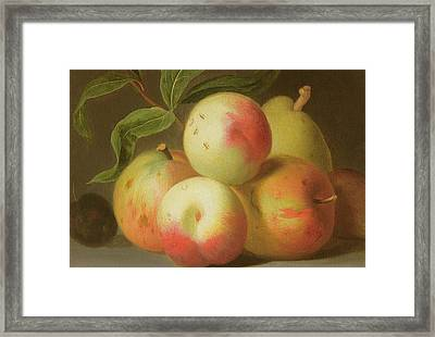 Detail Of Apples On A Shelf Framed Print by Jakob Bogdany