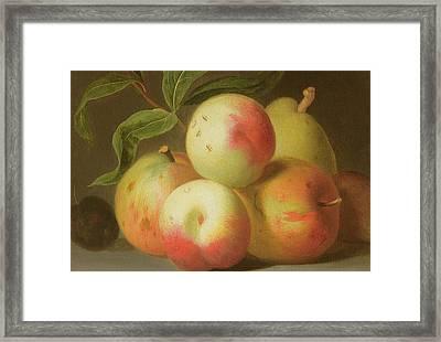 Detail Of Apples On A Shelf Framed Print