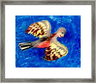 Detail Of Bird People Flying Chaffinch  Framed Print by Sushila Burgess