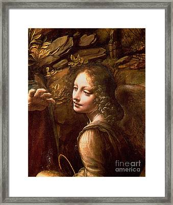 Detail Of The Angel From The Virgin Of The Rocks  Framed Print by Leonardo Da Vinci