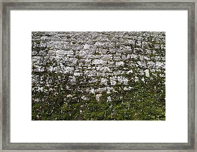 Detailed View Of The Stone Wall Framed Print by Todd Gipstein