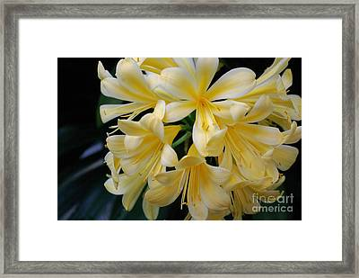 Details In Yellow And White Framed Print by John S