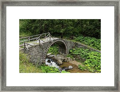 Deteriorating Slowly - The Elegant Arch Of An Ancient Stone Bridge Framed Print by Georgia Mizuleva