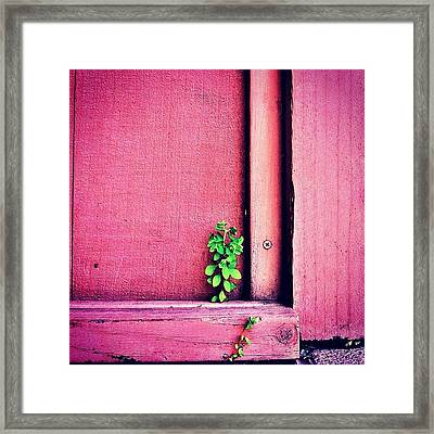 Determination Framed Print