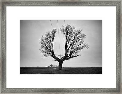 Determination  Framed Print by Off The Beaten Path Photography - Andrew Alexander