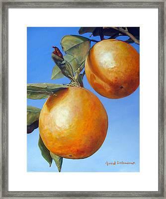 Deux Oranges Framed Print by Muriel Dolemieux