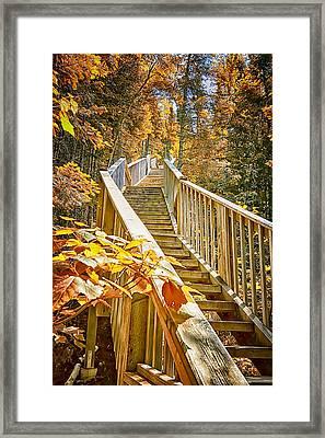 Devil's Kettle Stairway Framed Print by Linda Tiepelman