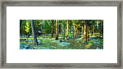 Devils Tower Morning Framed Print by Dave Luebbert