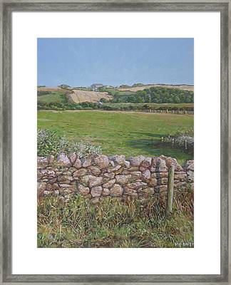 Devon Field And Drystone Wall Framed Print by Martin Davey