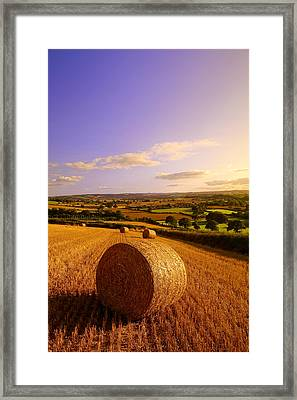 Devon Haybales Framed Print