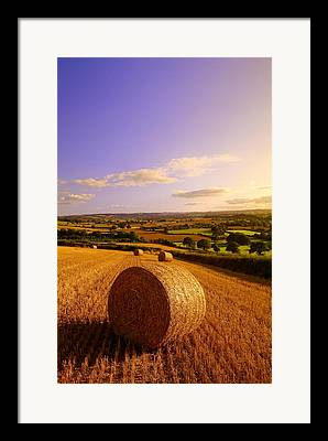 Haybale Photographs Framed Prints