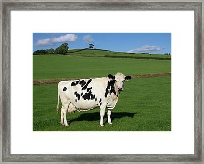 Devon Milk Factory Framed Print by Pete Hemington
