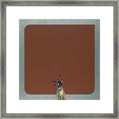 Devon Rex Framed Print