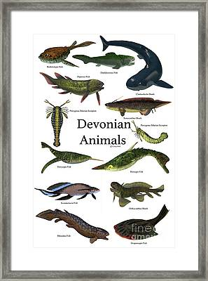 Devonian Animals Framed Print by Corey Ford