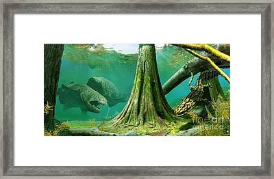 Devonian Mural Framed Print