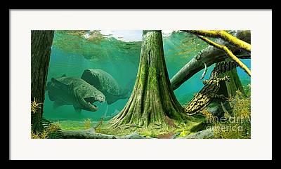 Ecosystem Framed Prints