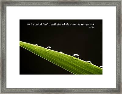 Dew Drops On Leaf With Inspirational Text Framed Print by Donald  Erickson