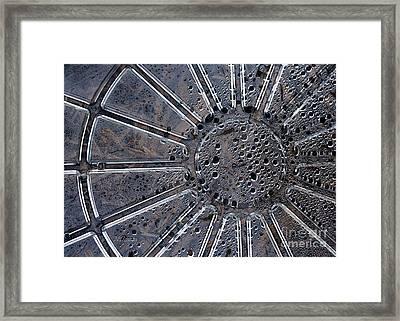 Dew On Dish Framed Print