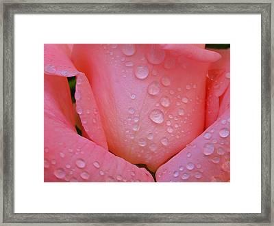Dewy Beauty Framed Print by Juergen Roth