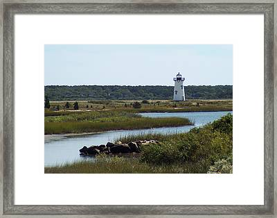 Edgartown Harbor Lighthouse Framed Print