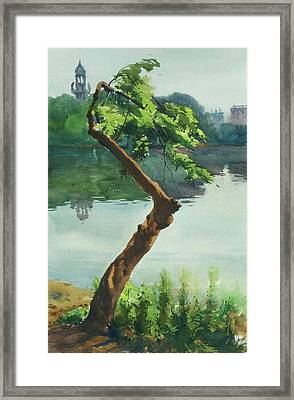 Dhanmondi Lake 03 Framed Print