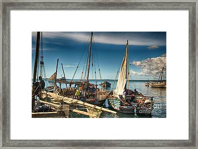 Dhow Sailing Boat Framed Print by Amyn Nasser
