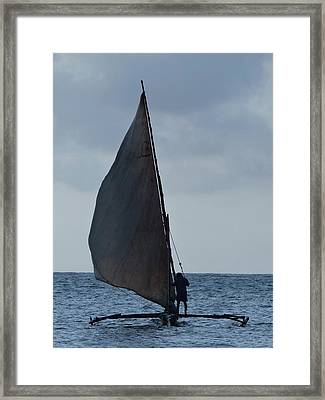 Dhow Wooden Boats In Sail Framed Print