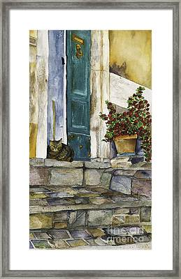 Di Gatto Framed Print