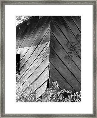 Framed Print featuring the photograph Diagonals by Curtis J Neeley Jr