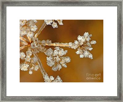 Diamond Ice Framed Print