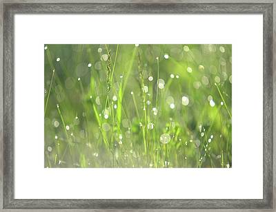Diamond Sparkles. Green World Framed Print by Jenny Rainbow