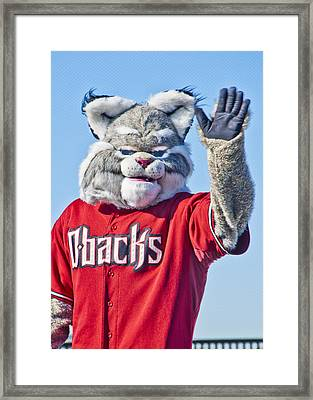 Diamondbacks Mascot Baxter Framed Print