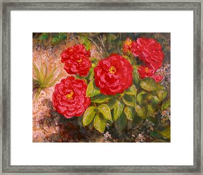 Diane's Roses Framed Print by Donelli  DiMaria