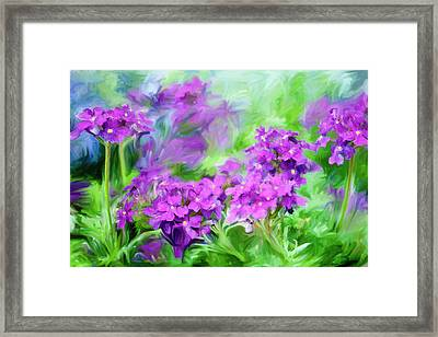 Dianthus Flowers Framed Print by Frank Tschakert